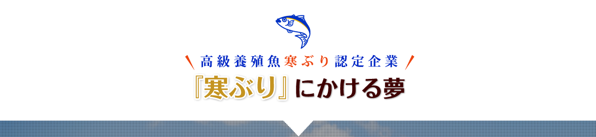 秋ぶり誕生秘話 最高の自然環境を持つ日本だけが育てることができる極上ぶり!